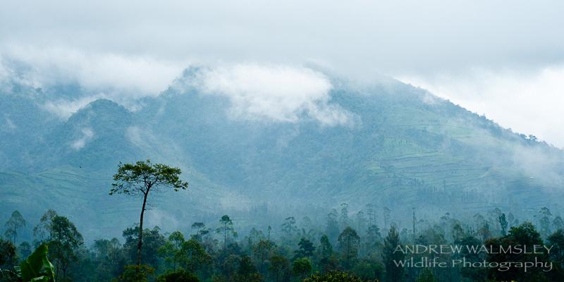 Dramatic scenery surrounding the Javan village of Cipaganti, Garut